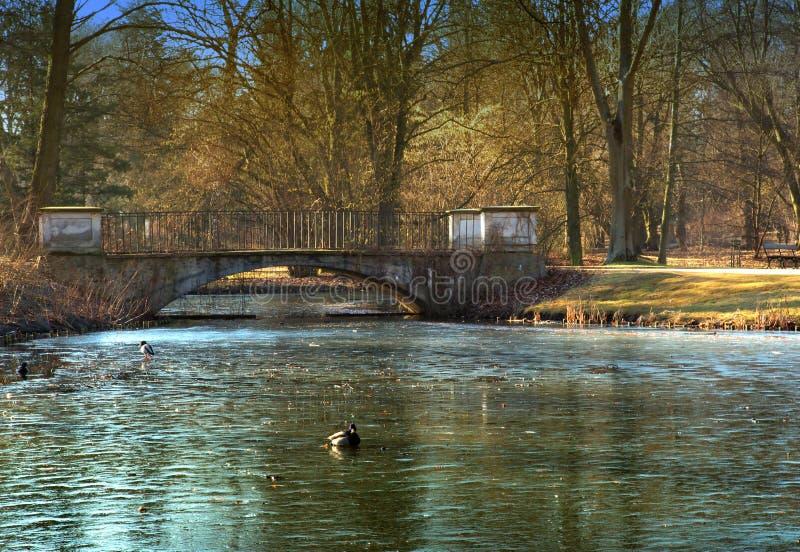 Teich- und Steinbrücke in einem Park in Warschau stockfoto