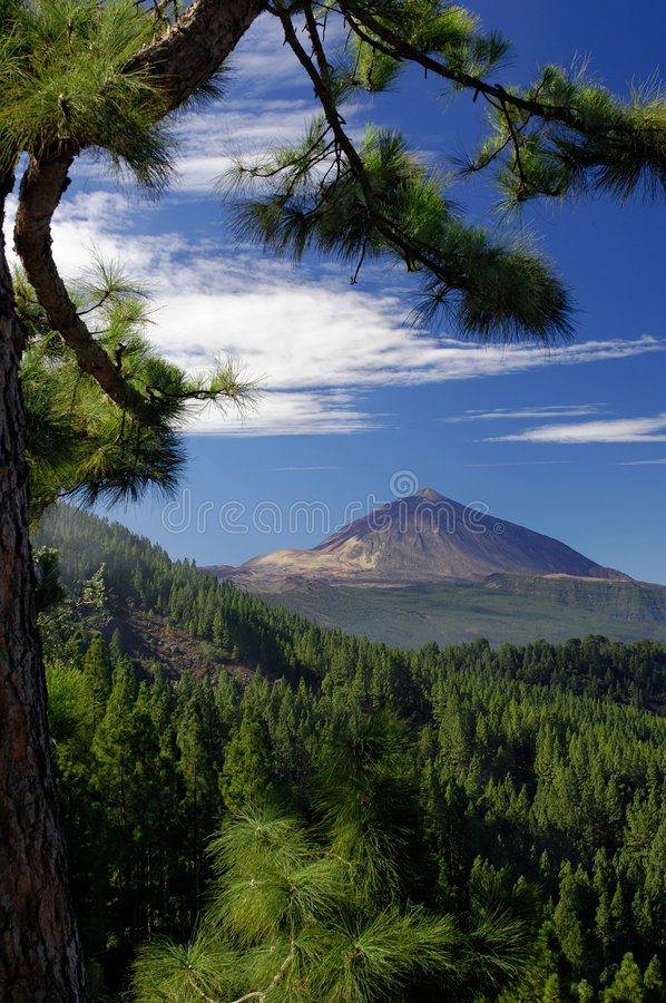 Teide. Hill and Orotava valley on Tenerife, Canary island stock photography