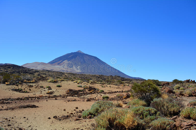 Teide National Park. Tenerife, Canary Islands, Spain stock photo