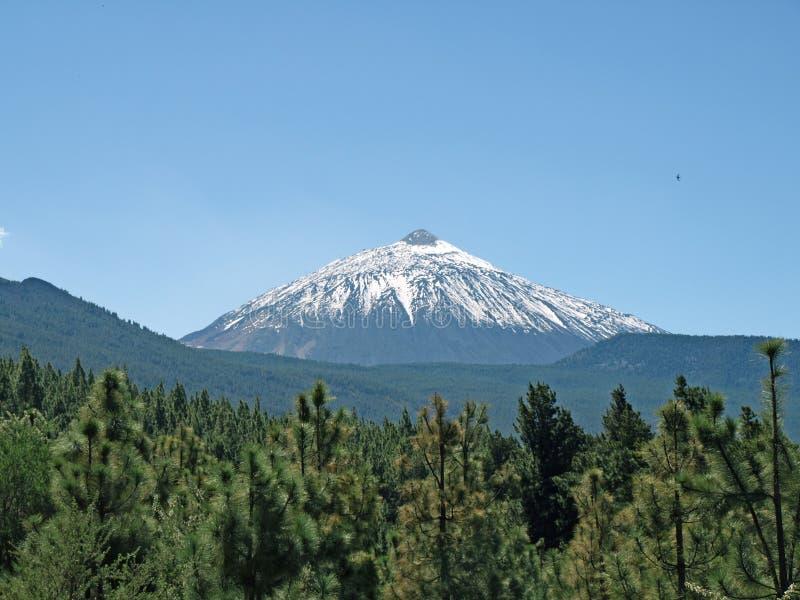 Teide nevicato fotografie stock libere da diritti