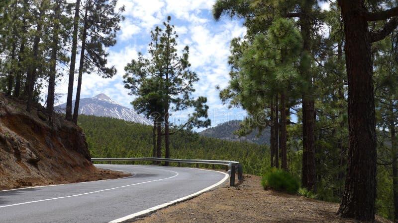 Teide stock image