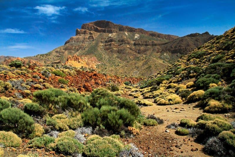 Download Teide Volcano in Tenerife stock photo. Image of scenic - 24095966