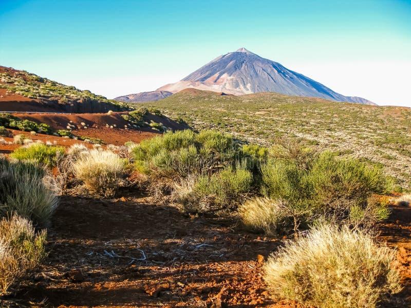 Teide Vulkan lizenzfreie stockbilder