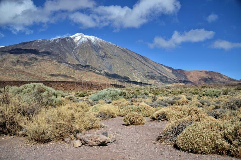 Teide Vulkan stockfotografie