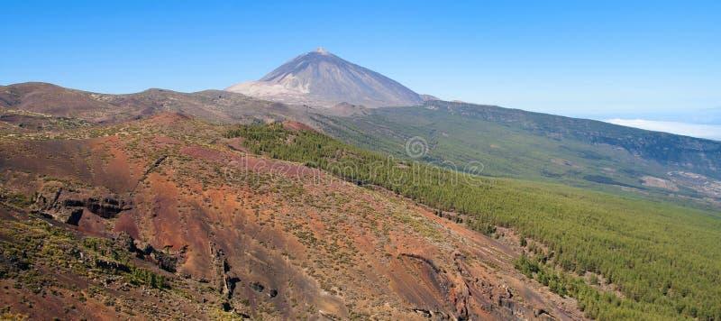 Teide y bosque de Oratava del La imágenes de archivo libres de regalías
