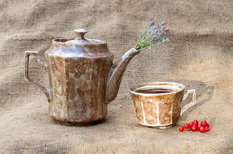 teiera e una tazza con tè fotografia stock libera da diritti