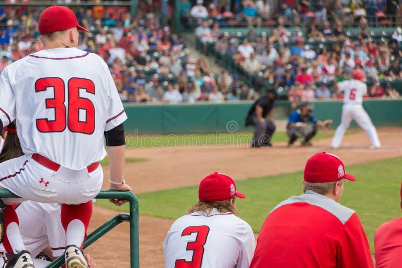 Teig herauf Baseball-Spieler stockbild