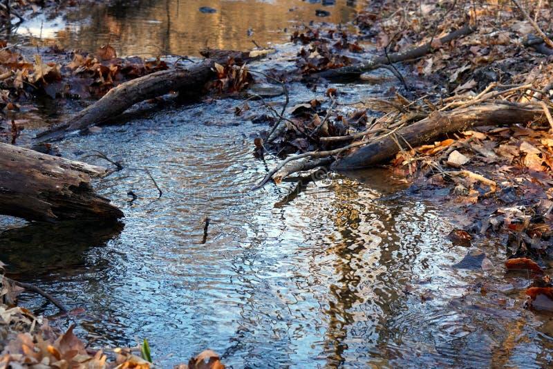 Teil des Brandywine-Nebenfluss-Nationalparks stockfoto