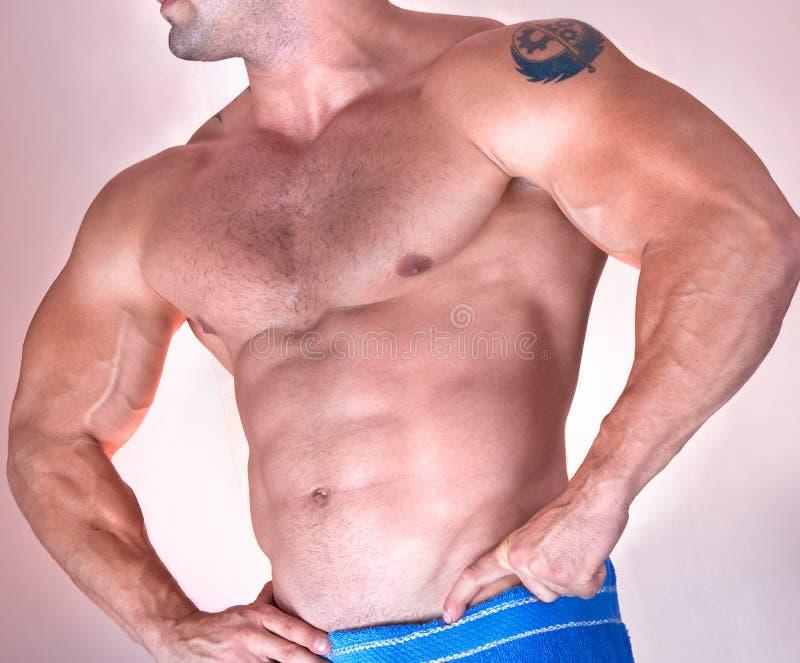 Teil des schönen männlichen Torsos. Seitenansicht lizenzfreies stockfoto