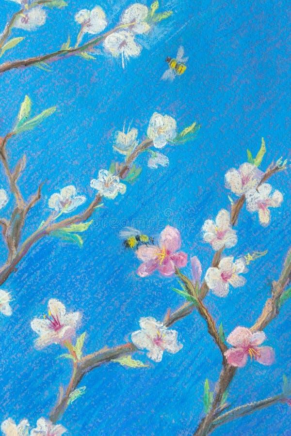 Teil malender Pastell auf Papier 'blühende Niederlassungen gegen den blauen Himmel Fr?hling ? stockfotografie