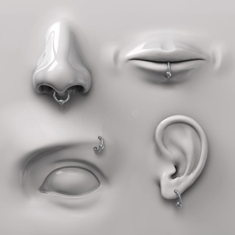 Teile des Gesichtes lizenzfreie abbildung