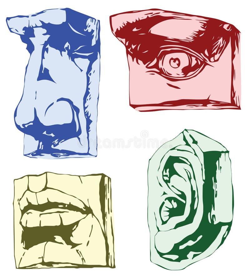 Teile des Gesichtes stock abbildung