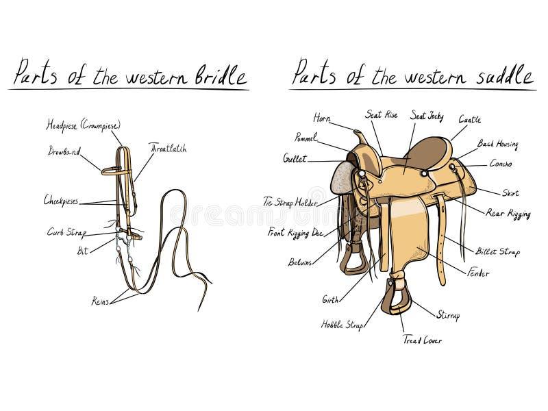 Teile des Western-Sattels und des Zaumes vektor abbildung