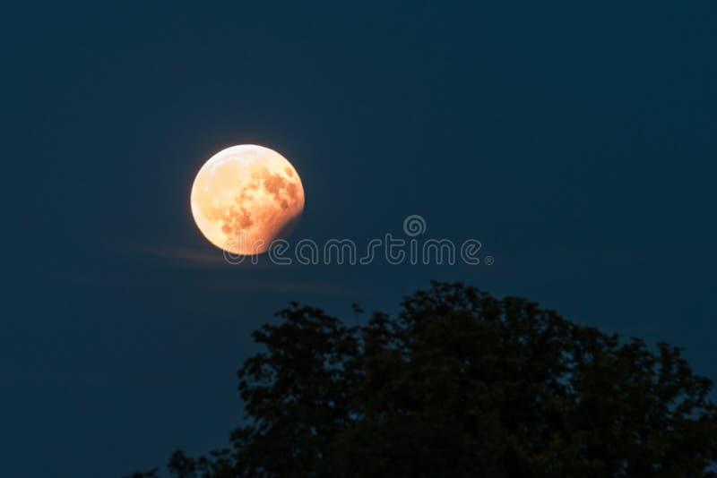 Teilweise Mondfinsternis am 7. August 2017 Regensburg, Deutschland stockfotografie