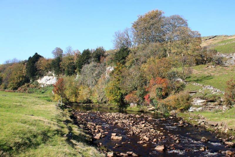 Teintes d'automne, Swaledale, vallées de Yorkshire, R-U photos libres de droits