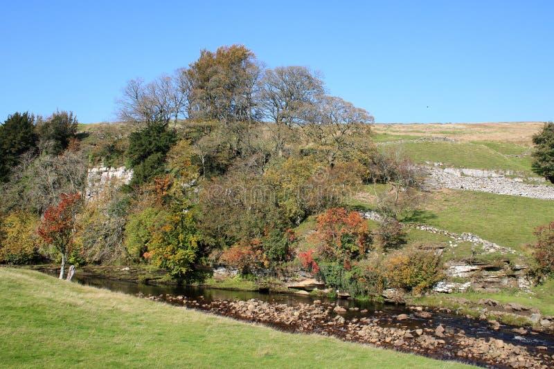 Teintes d'automne, Swaledale, vallées de Yorkshire, R-U photo stock