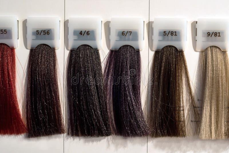 Catalogue palette couleur cheveux
