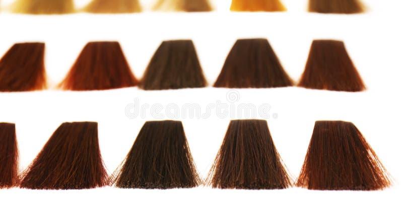 Teintes de palette pour la teinture de cheveux photographie stock