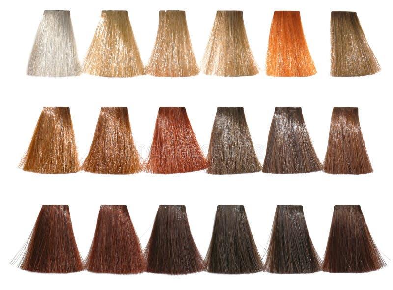 Teintes de palette pour la teinture de cheveux image libre de droits