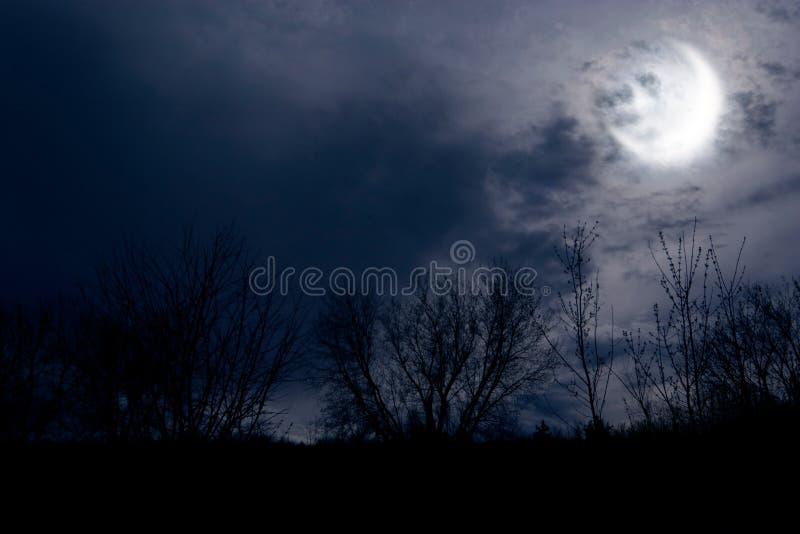 tej jesieni noc zdjęcie royalty free