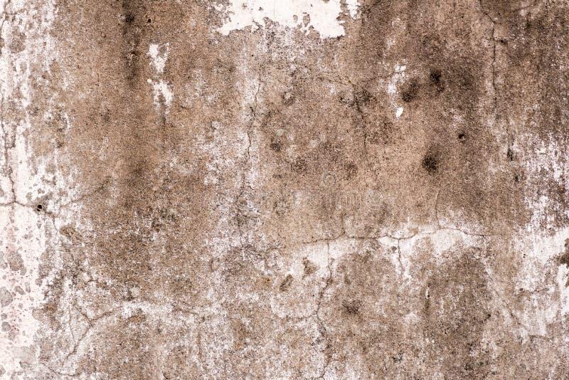 Teja, fondo del mortero imágenes de archivo libres de regalías