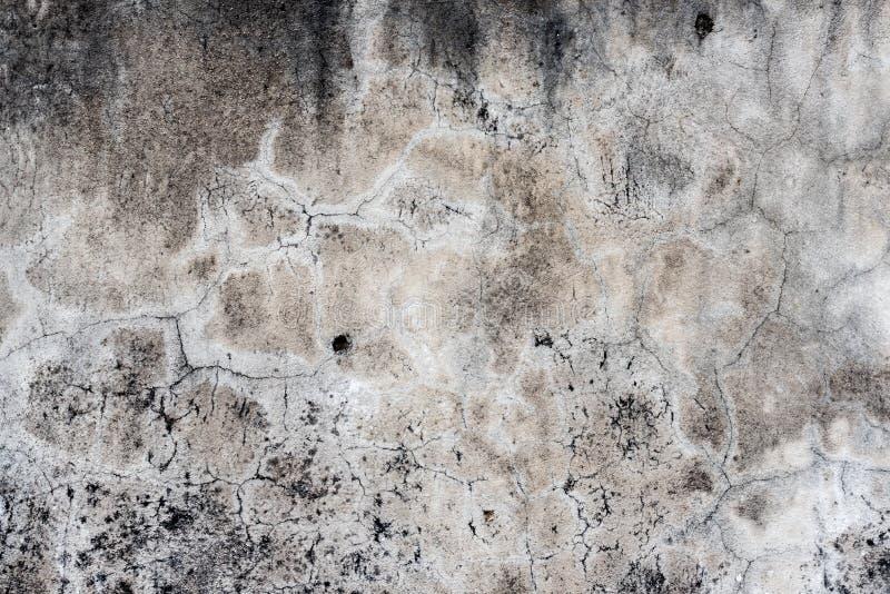 Teja, fondo del mortero foto de archivo libre de regalías