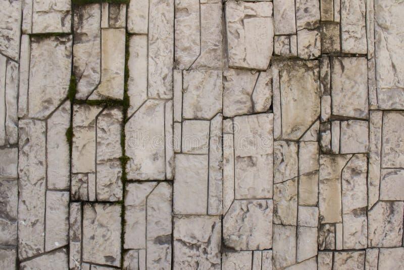 Teja modelada piedra gris con el musgo fotografía de archivo libre de regalías