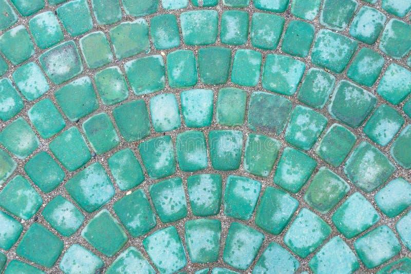 Teja verde del camino foto de archivo