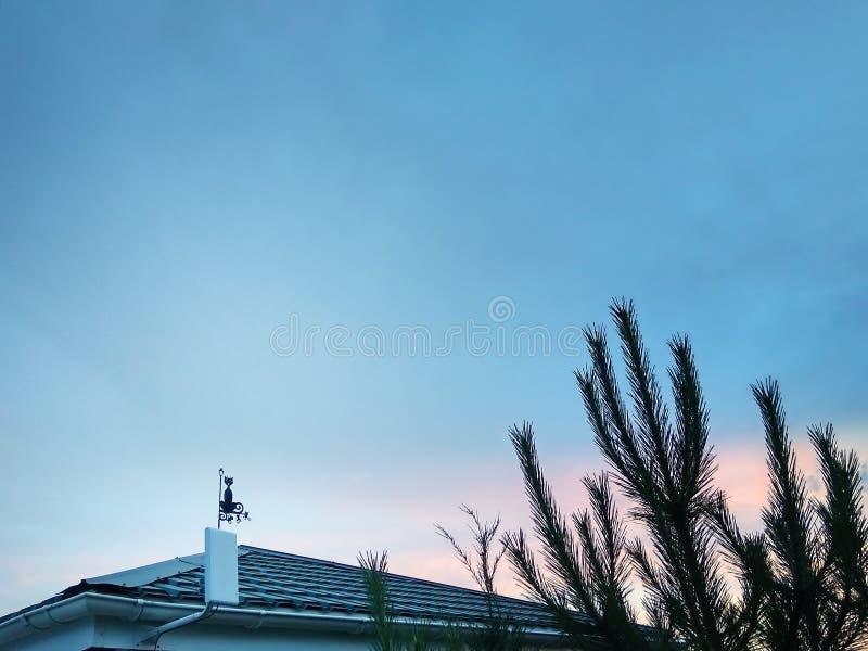 Tejado con una paleta de tiempo, la figura de un gato Cielo azul Su hogar imagen de archivo