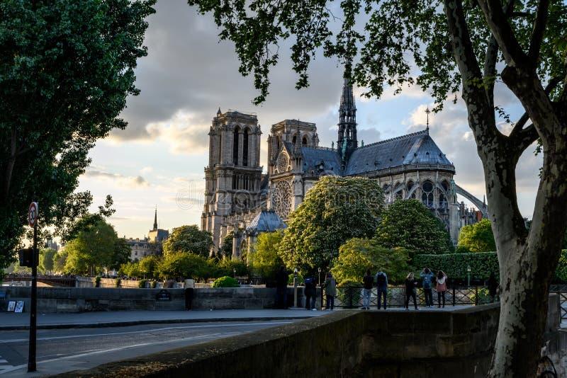 Tejado de Notre Dame Paris con el río el Sena en puesta del sol imagen de archivo libre de regalías