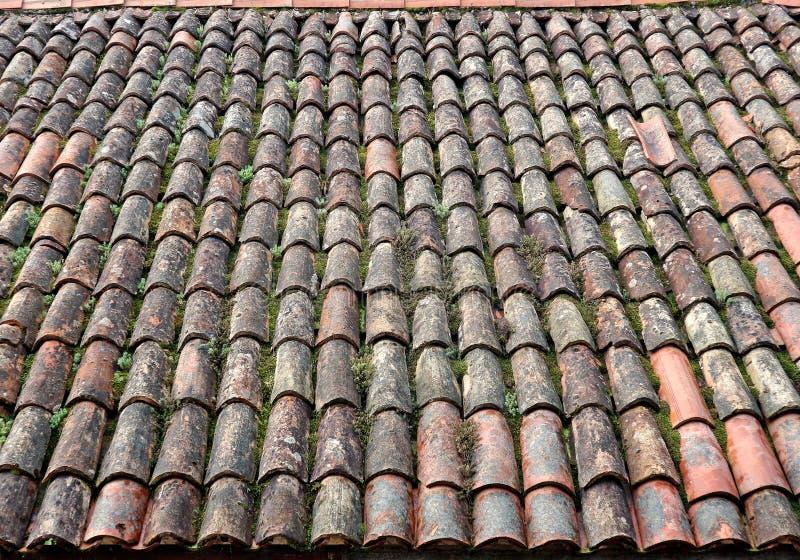 Tejado de teja resistido viejo con el musgo, los liquenes y las malas hierbas en su superficie fotos de archivo libres de regalías