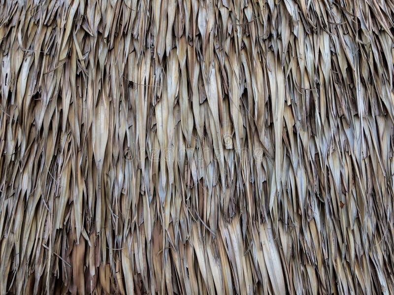 Tejado del vintage hecho de hoja de palma seca fotografía de archivo libre de regalías