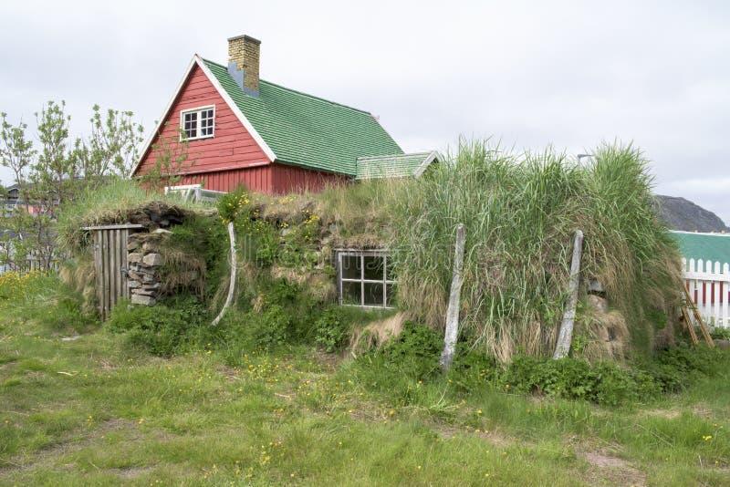 Tejado Qaqartoq, Groenlandia del césped imagen de archivo