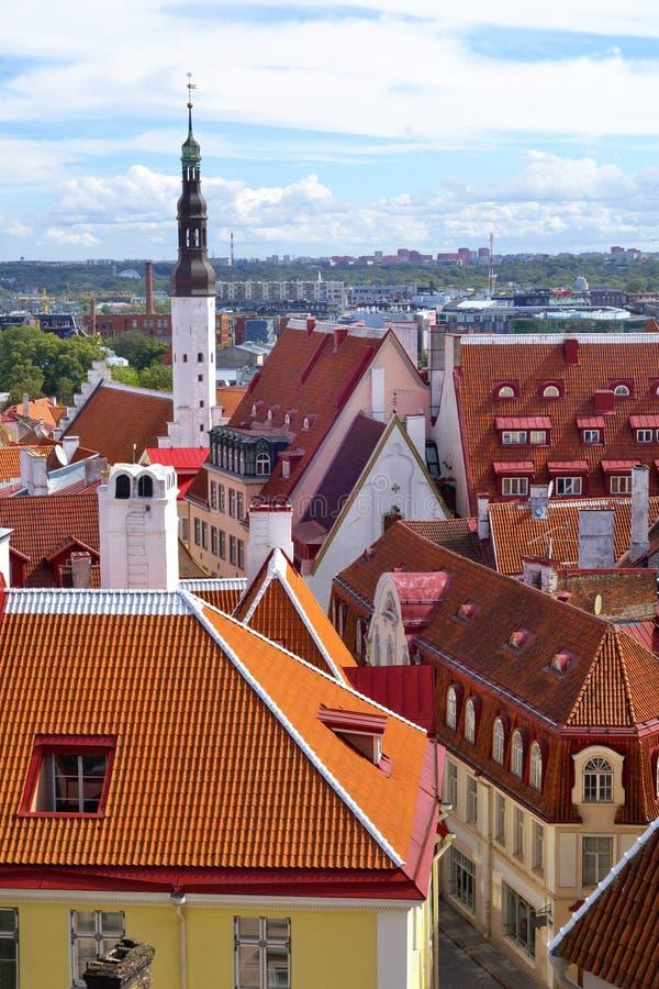 Tejados rojos en la ciudad vieja de Tallinn imagen de archivo