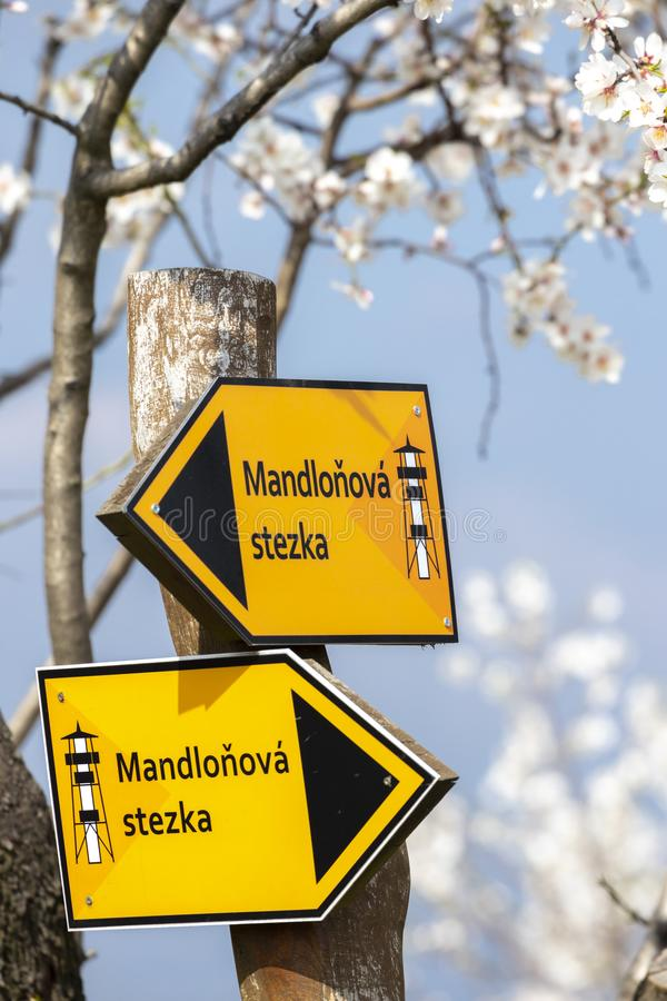 Teken & x22; amandel trail& x22; in de boomgaard van de Amandelboom in Hustopece, Zuid-Moravië, Tsjechische Republiek stock afbeelding