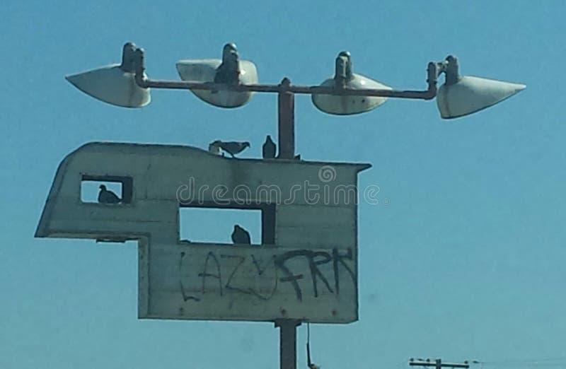 Teken met vogels royalty-vrije stock foto