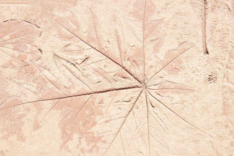 tekens van blad op het beton royalty-vrije stock afbeelding