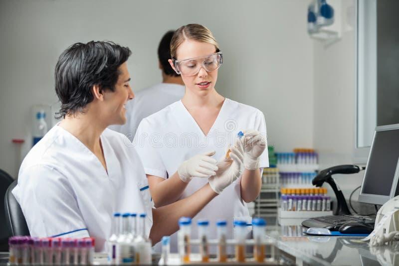 Tekniker som analyserar prövkopian i medicinsk labb arkivbilder
