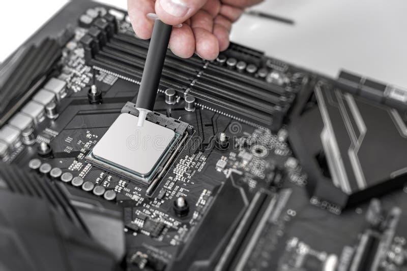 Tekniker som applicerar termisk deg på CPUen för datorbrädechip royaltyfria bilder