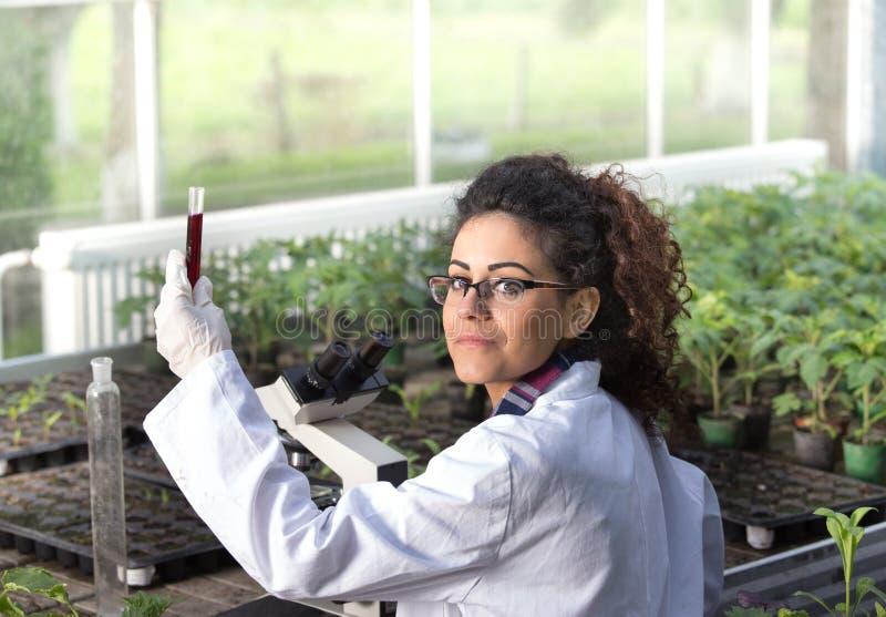 Tekniker som arbetar på växtskydd arkivfoto