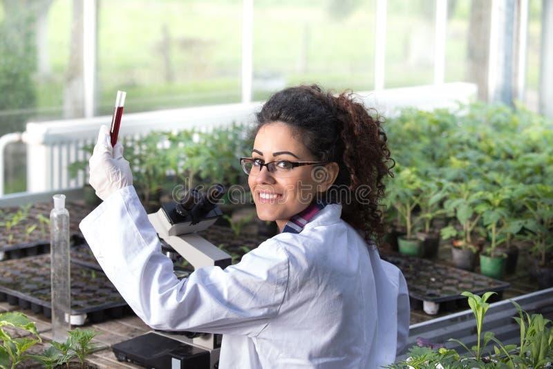 Tekniker som arbetar på växtskydd arkivfoton