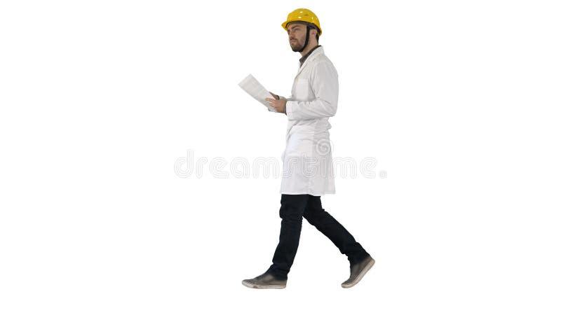 Teknikerchefen som går med den hårda hatten, rymmer papper och kontrollerar på vit bakgrund royaltyfria bilder