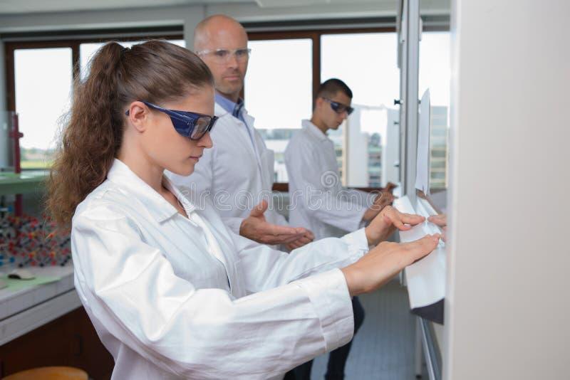 Teknikstudenter som arbetar i labb royaltyfria foton