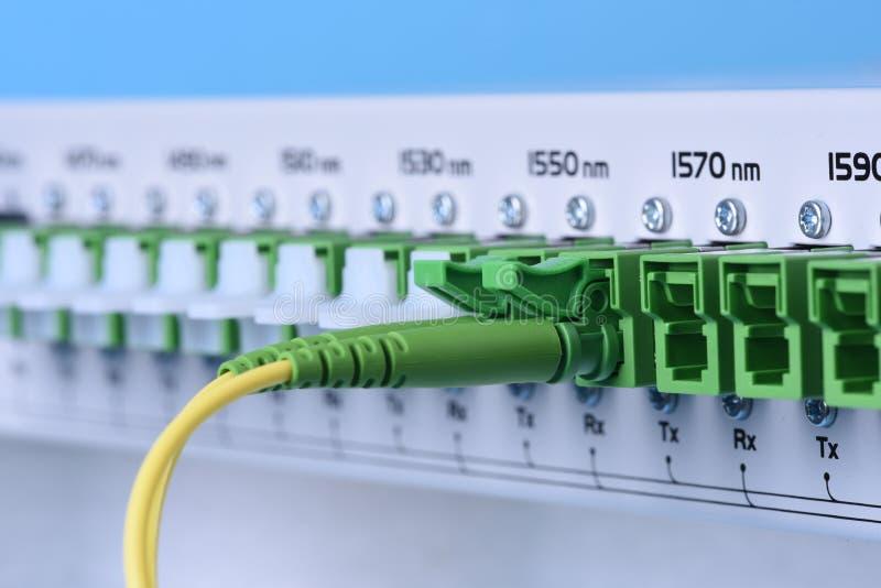Teknologinätverksmitt med för utrustninglapp för fiber den optiska closeupen för kablar royaltyfria bilder