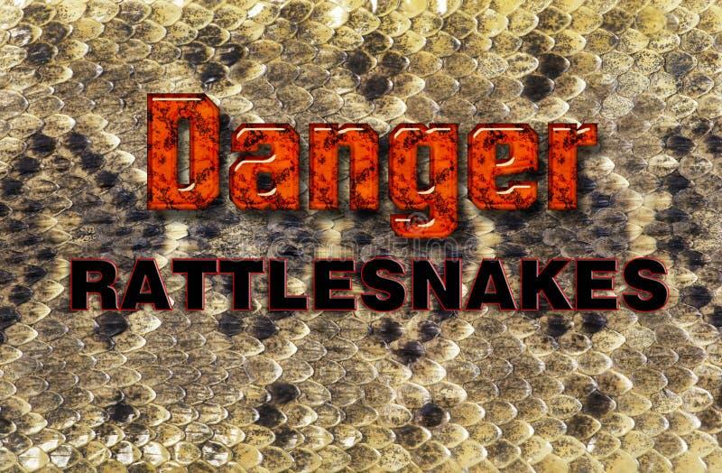 Teksas Diamondback brzęku węża skóra obrazy stock