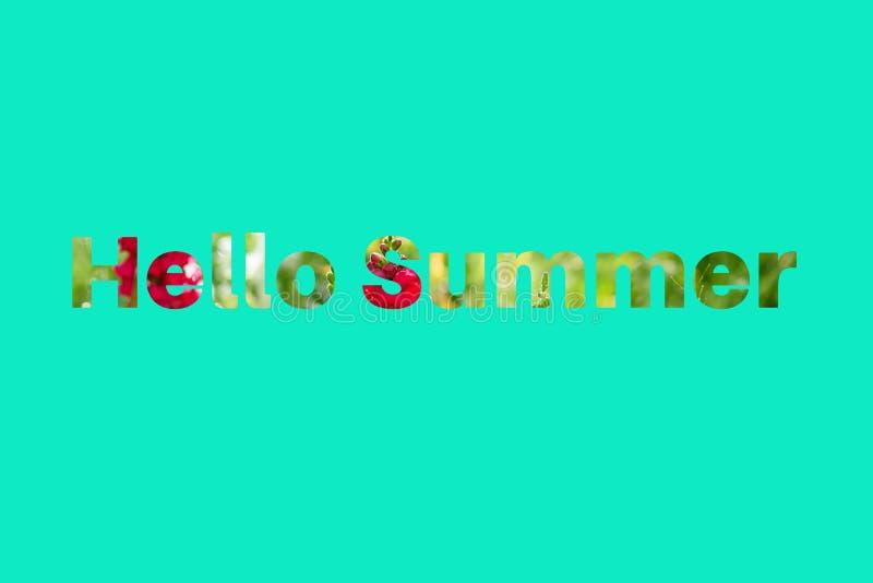 Teksta lato od tropikalnych kwiatów na mennicy zieleni tle CZEŚĆ fotografia stock