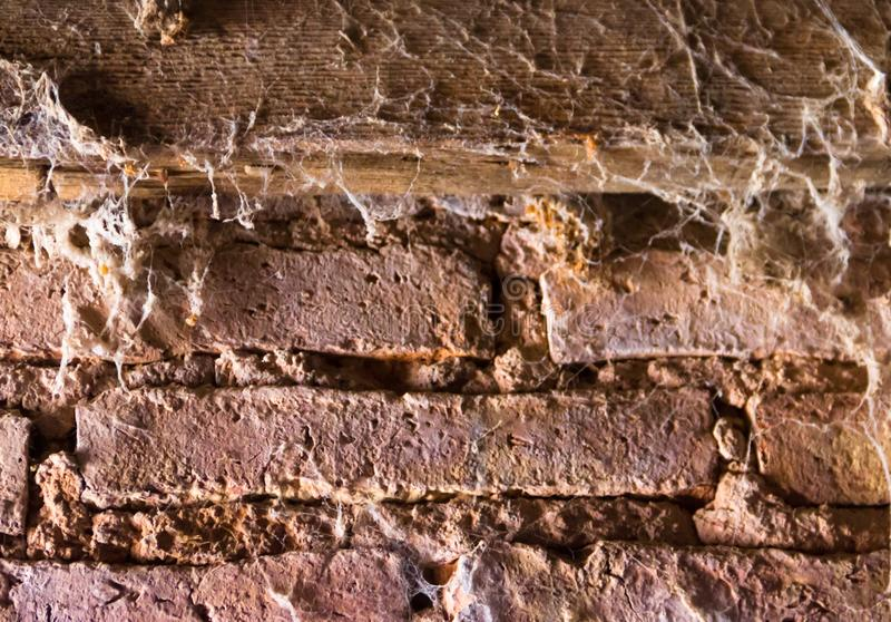 Tekstur cegły pełno pajęczyny fotografia stock