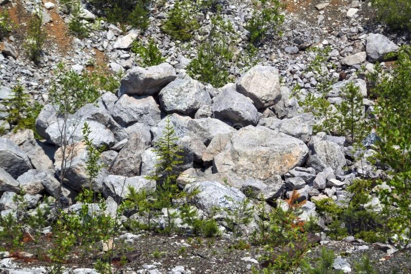 Tekstura ampuła kamienie w łupie dla ekstrakcji kamień fotografia royalty free