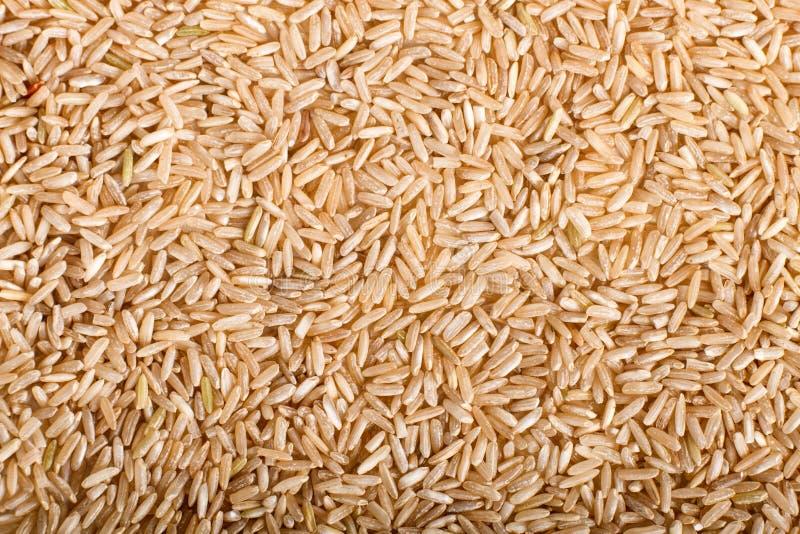Tekstura biali brown ryż obrazy royalty free