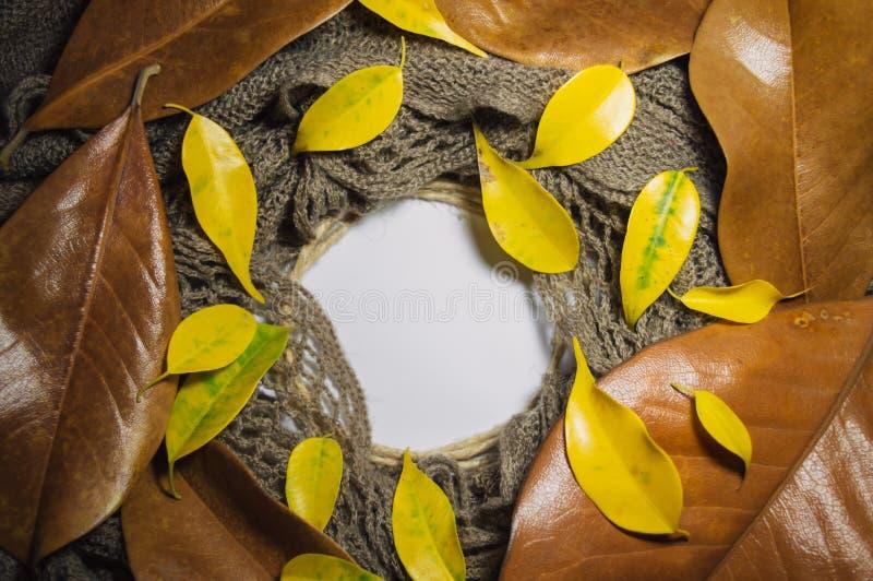 Tekstura brązu szalika, żółtych i brown jesień liście m ciepli, zdjęcie royalty free